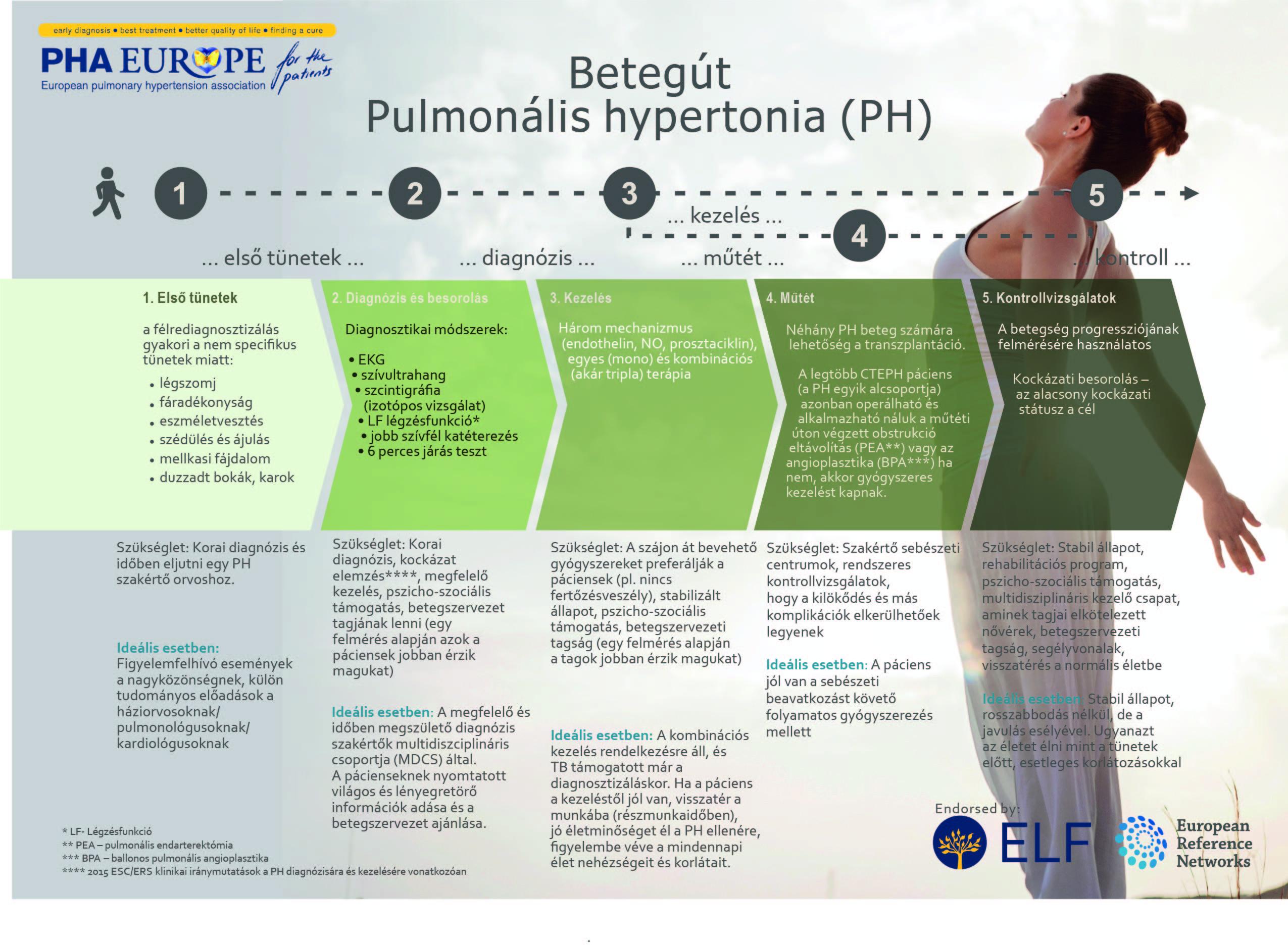 PH Patient Journey 2020 - Betegút